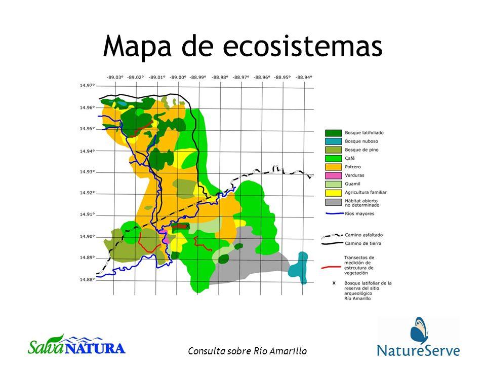 Consulta sobre Río Amarillo Mapa de ecosistemas