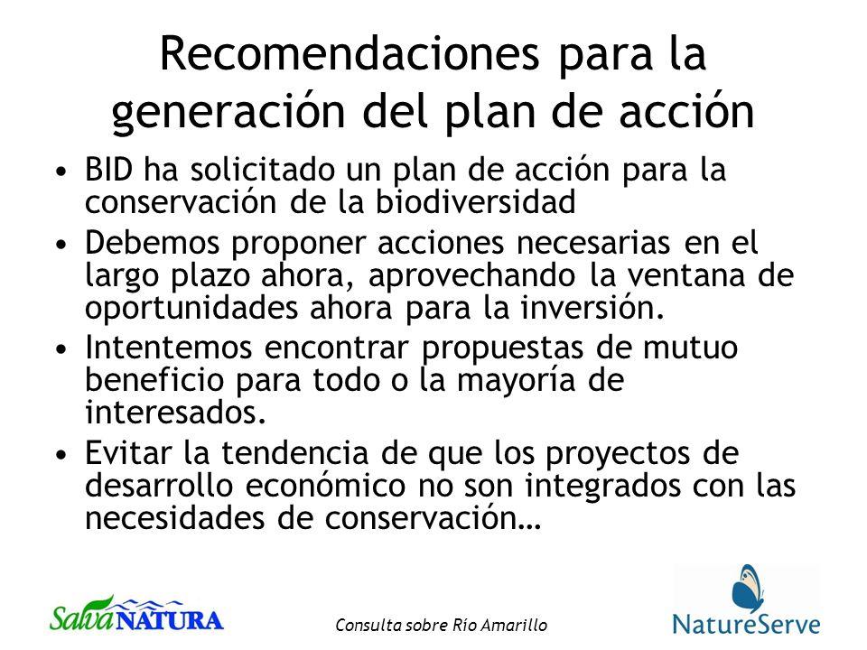 Consulta sobre Río Amarillo Recomendaciones para la generación del plan de acción BID ha solicitado un plan de acción para la conservación de la biodiversidad Debemos proponer acciones necesarias en el largo plazo ahora, aprovechando la ventana de oportunidades ahora para la inversión.