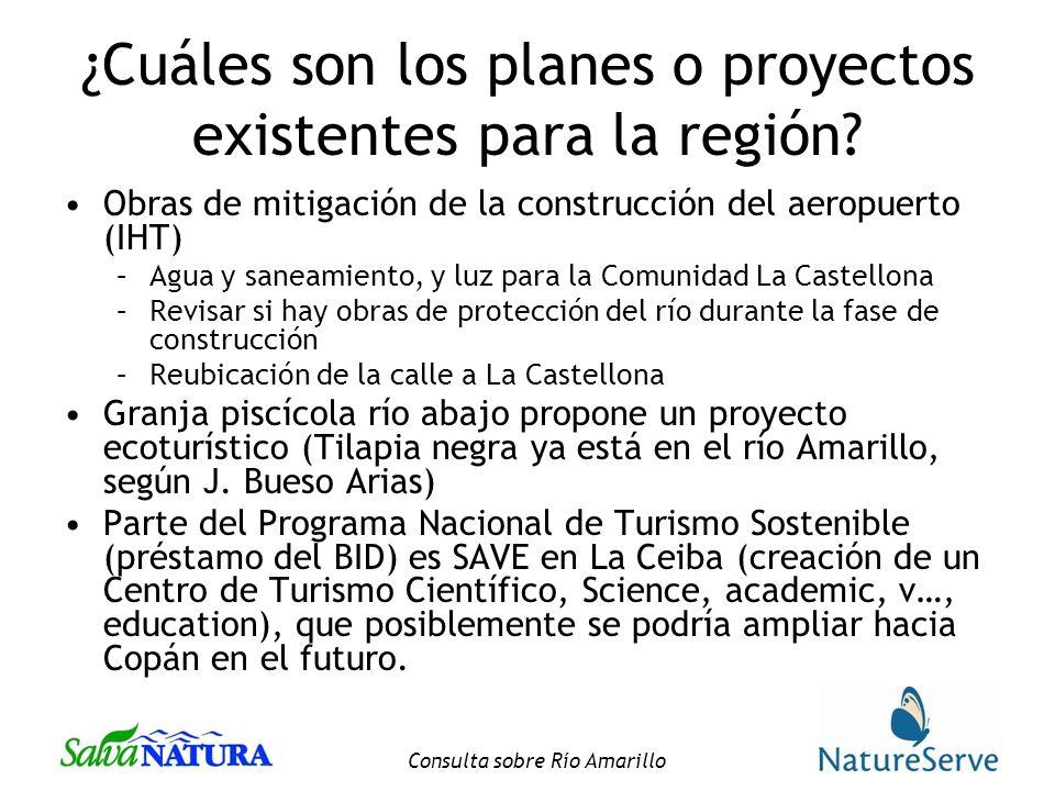 Consulta sobre Río Amarillo ¿Cuáles son los planes o proyectos existentes para la región.