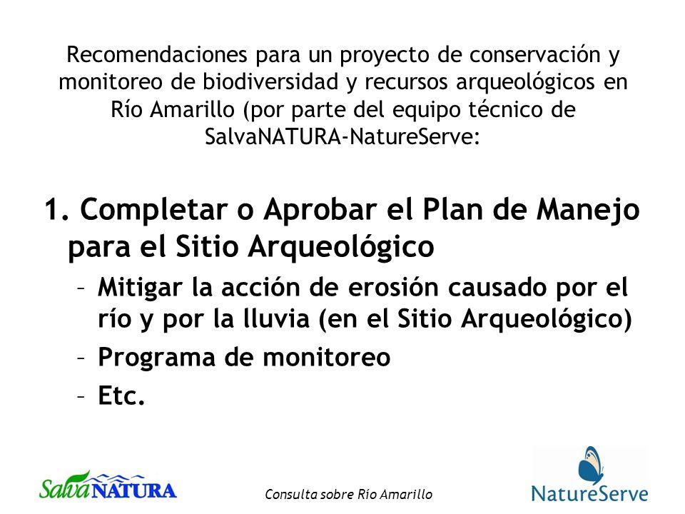 Consulta sobre Río Amarillo Recomendaciones para un proyecto de conservación y monitoreo de biodiversidad y recursos arqueológicos en Río Amarillo (por parte del equipo técnico de SalvaNATURA-NatureServe: 1.