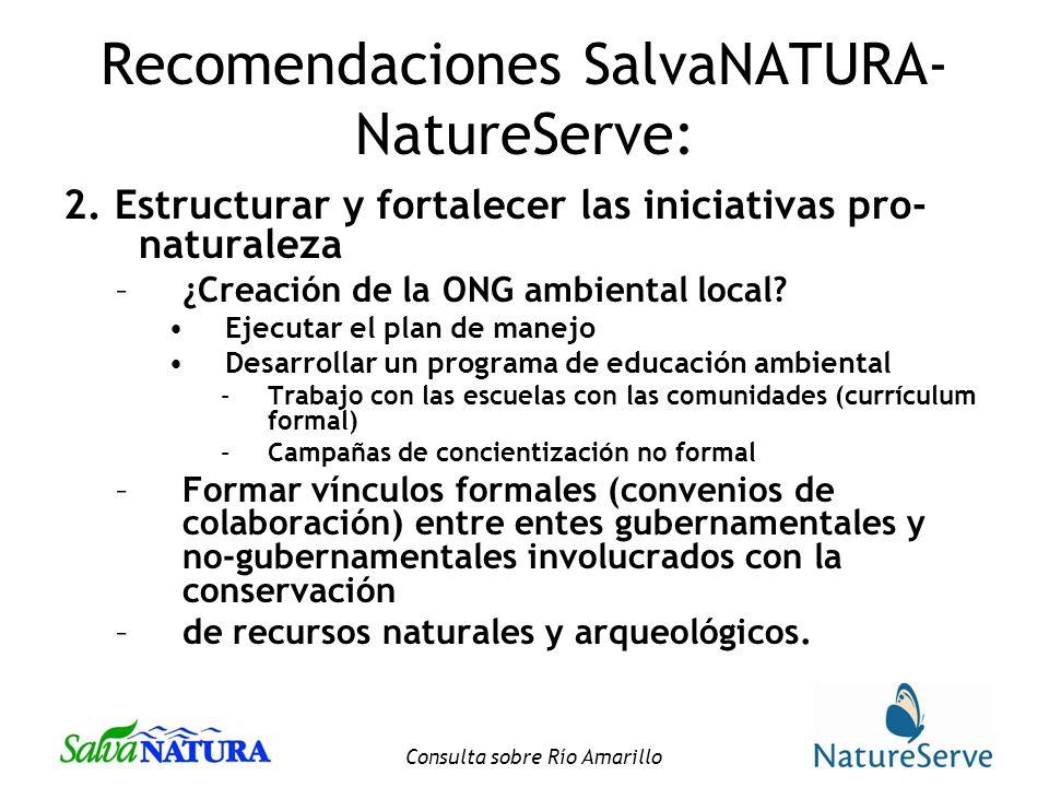 Consulta sobre Río Amarillo Recomendaciones SalvaNATURA- NatureServe: 2.