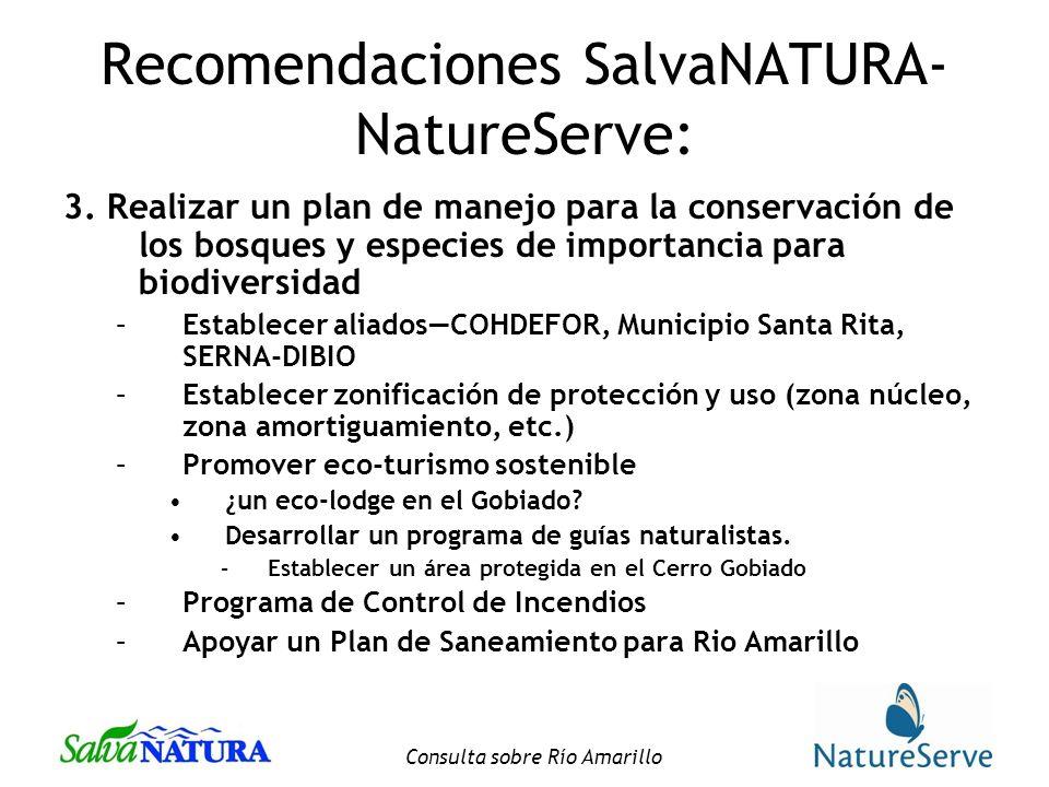 Consulta sobre Río Amarillo Recomendaciones SalvaNATURA- NatureServe: 3.