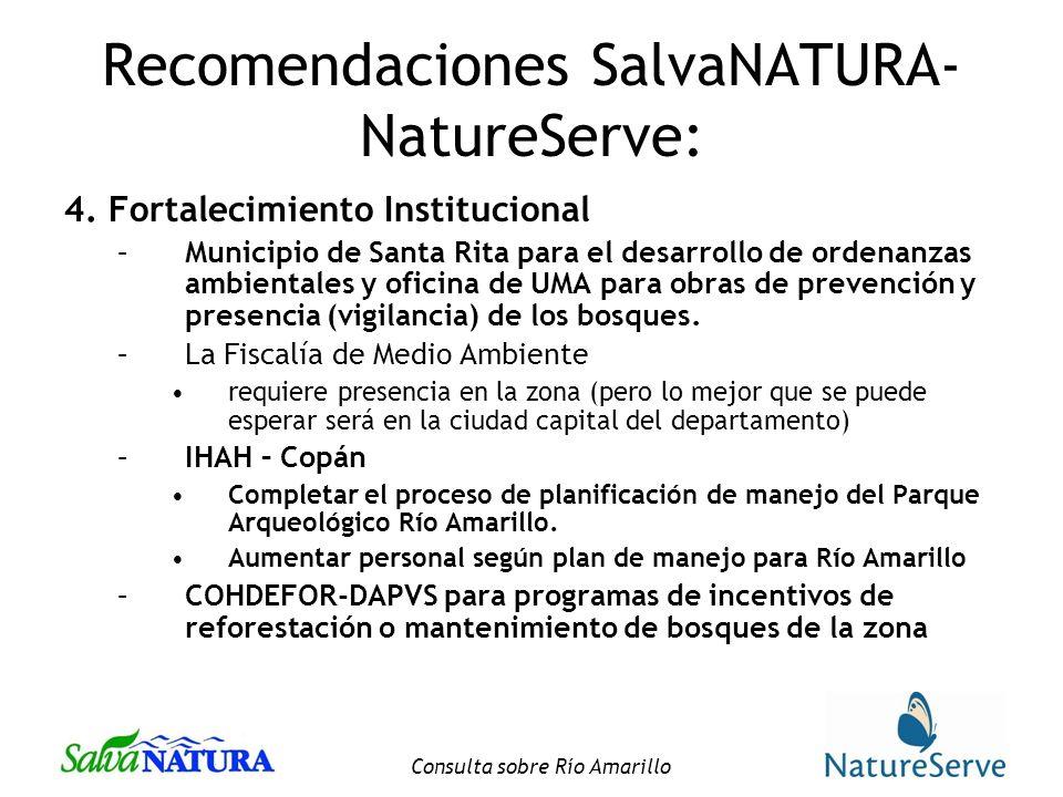 Consulta sobre Río Amarillo Recomendaciones SalvaNATURA- NatureServe: 4.