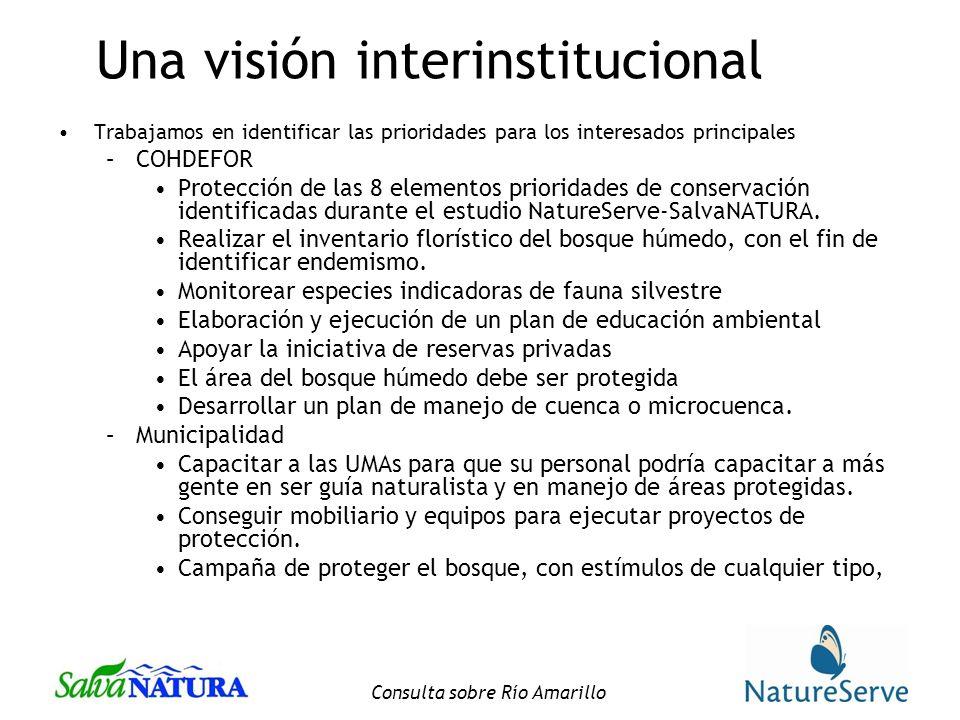 Consulta sobre Río Amarillo Una visión interinstitucional Trabajamos en identificar las prioridades para los interesados principales –COHDEFOR Protección de las 8 elementos prioridades de conservación identificadas durante el estudio NatureServe-SalvaNATURA.