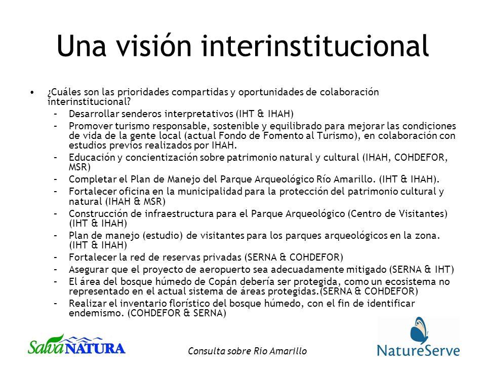Consulta sobre Río Amarillo Una visión interinstitucional ¿Cuáles son las prioridades compartidas y oportunidades de colaboración interinstitucional.