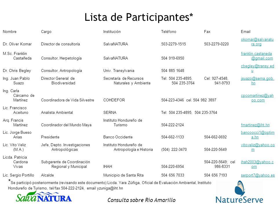 Consulta sobre Río Amarillo Lista de Participantes* NombreCargoInstituciónTeléfonoFaxEmail Dr.