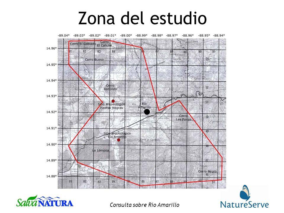 Consulta sobre Río Amarillo Zona del estudio