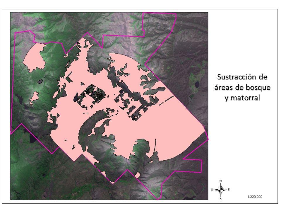 Sustracción de áreas de bosque y matorral
