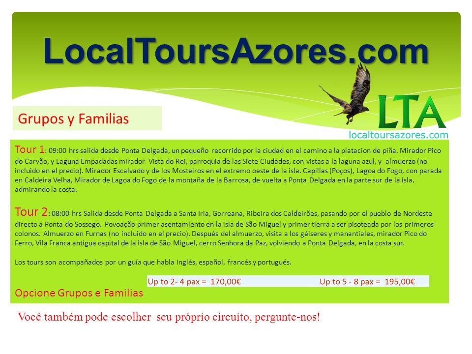 LocalToursAzores.com Grupos y Familias Tour 1 : 09:00 hrs salida desde Ponta Delgada, un pequeño recorrido por la ciudad en el camino a la platacion de piña.
