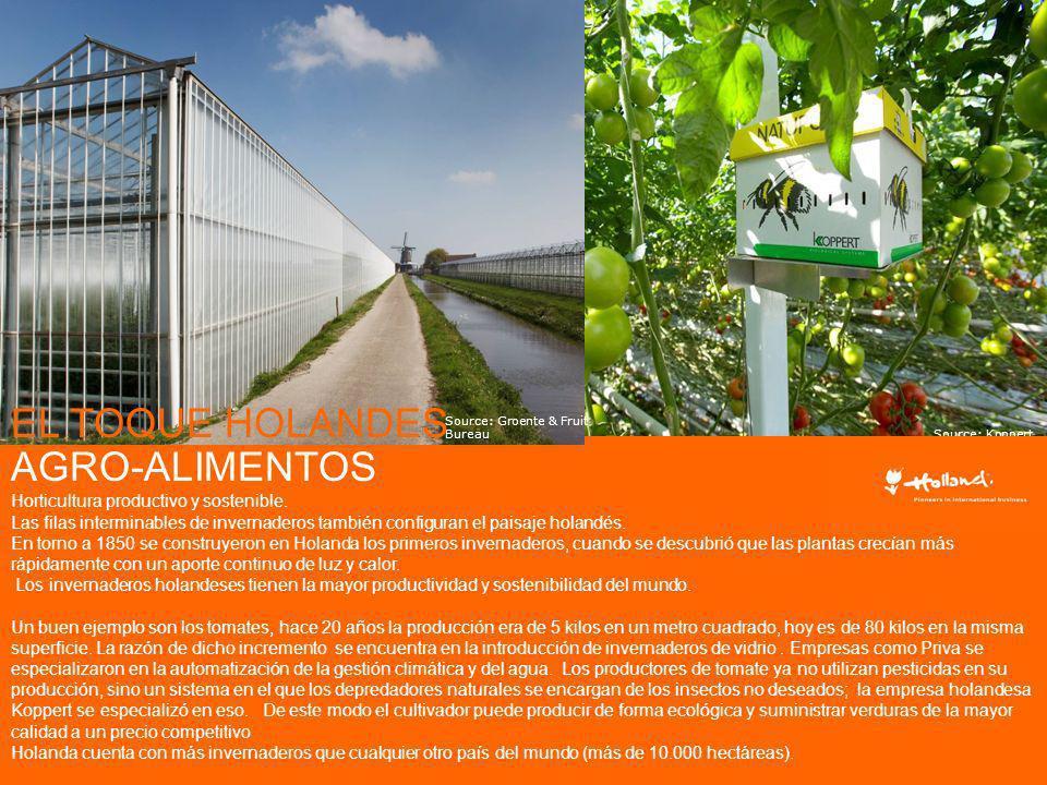 Source: Koppert AGRO-ALIMENTOS Horticultura productivo y sostenible. Las filas interminables de invernaderos también configuran el paisaje holandés. E