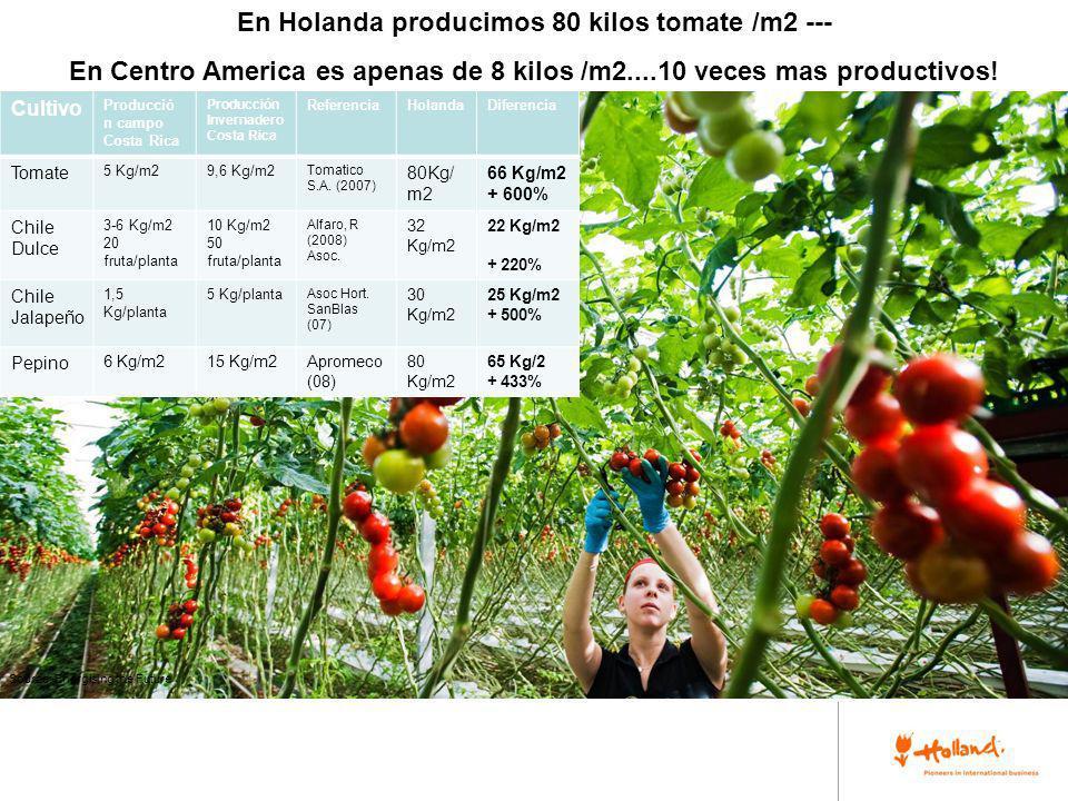 Source: Energising the Future En Holanda producimos 80 kilos tomate /m2 --- En Centro America es apenas de 8 kilos /m2....10 veces mas productivos! Cu