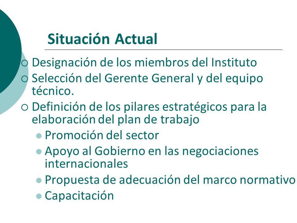 Situación Actual Designación de los miembros del Instituto Selección del Gerente General y del equipo técnico. Definición de los pilares estratégicos