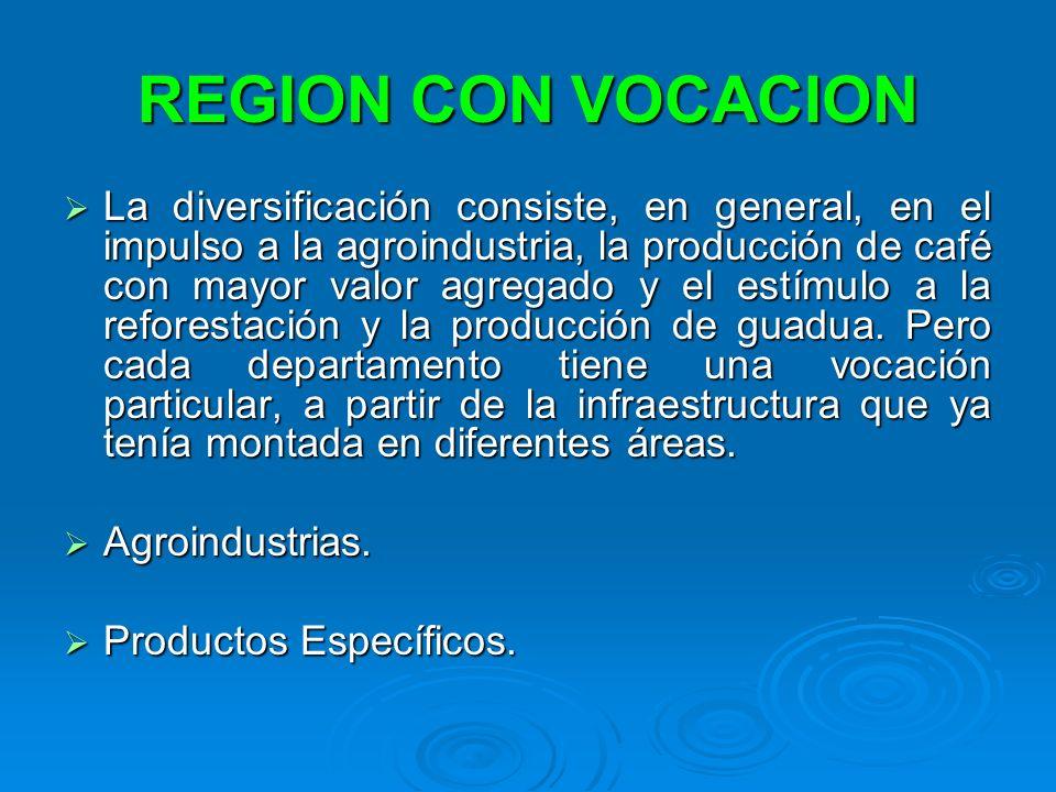 REGION CON VOCACION La diversificación consiste, en general, en el impulso a la agroindustria, la producción de café con mayor valor agregado y el est