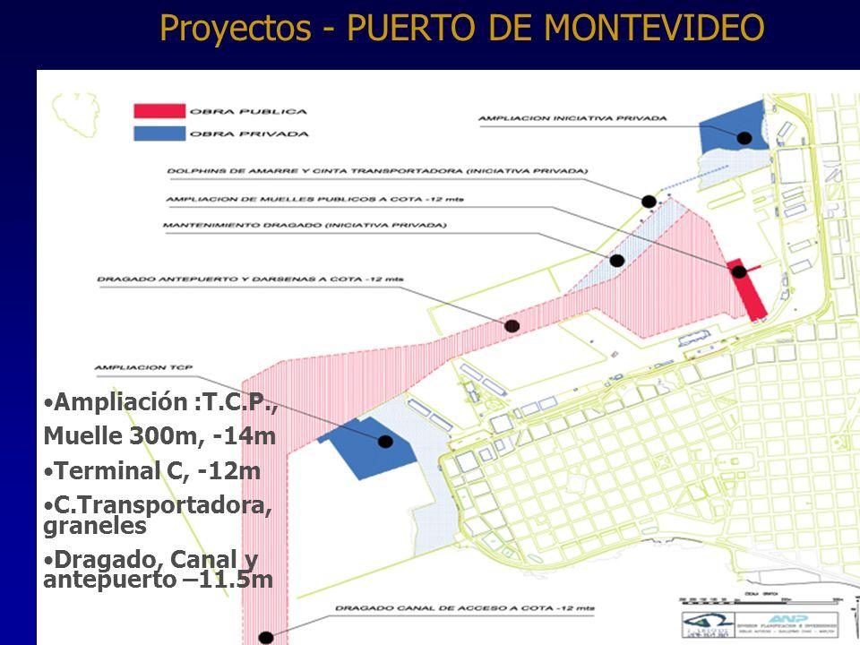 37 Ampliación :T.C.P., Muelle 300m, -14m Terminal C, -12m C.Transportadora, graneles Dragado, Canal y antepuerto –11.5m Proyectos - PUERTO DE MONTEVIDEO