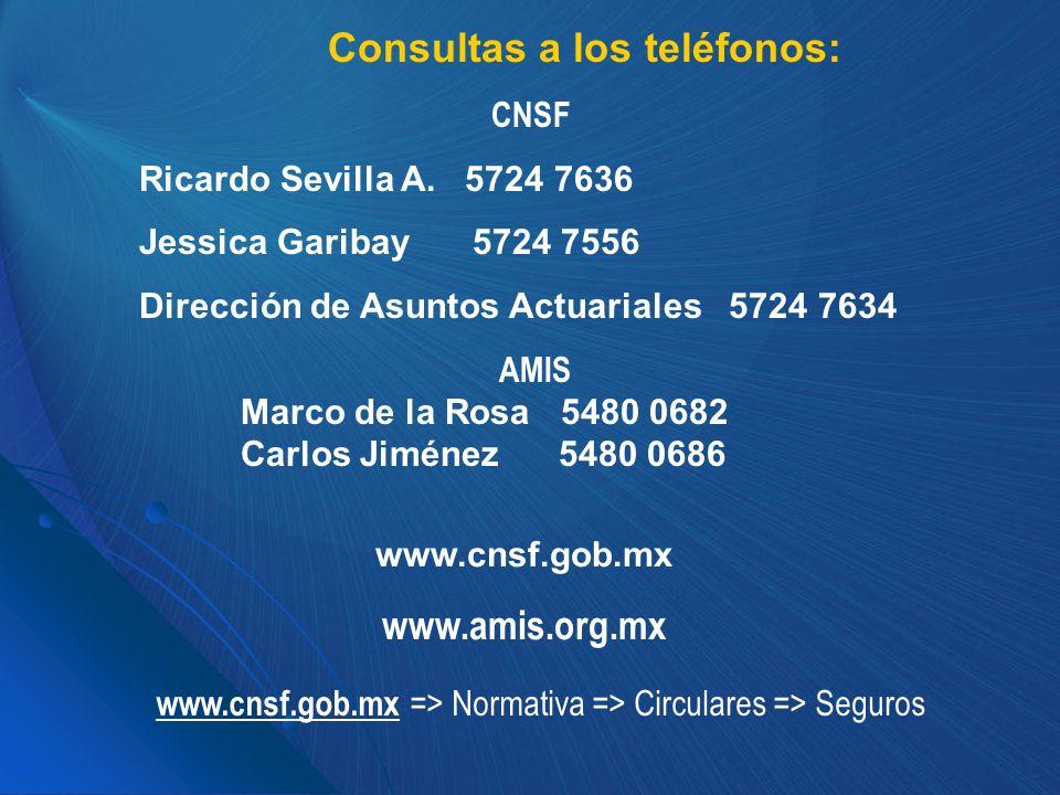 Consultas a los teléfonos: CNSF Ricardo Sevilla A. 5724 7636 Jessica Garibay 5724 7556 Dirección de Asuntos Actuariales 5724 7634 AMIS Marco de la Ros