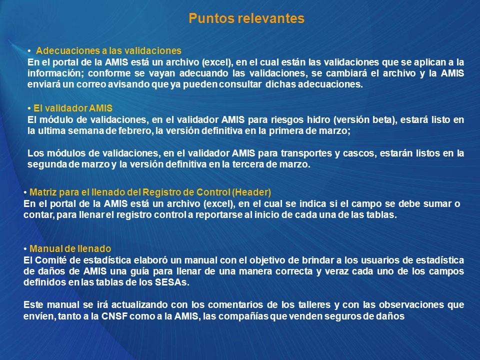 Puntos relevantes El validador AMIS El módulo de validaciones, en el validador AMIS para riesgos hidro (versión beta), estará listo en la ultima seman