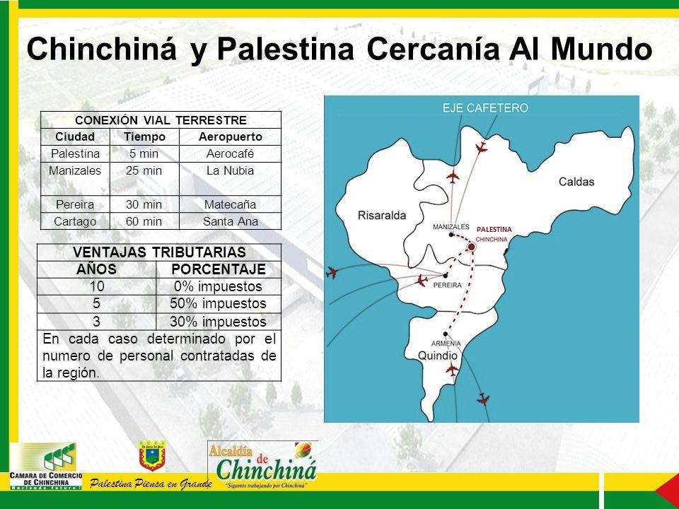 Palestina Piensa en Grande VENTAJAS TRIBUTARIAS AÑOSPORCENTAJE 100% impuestos 550% impuestos 330% impuestos En cada caso determinado por el numero de personal contratadas de la región.