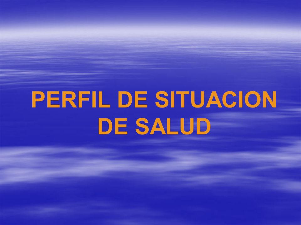 PERFIL DE SITUACION DE SALUD