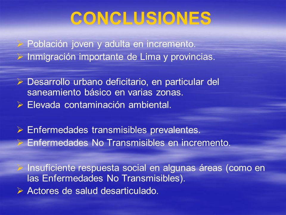 CONCLUSIONES Población joven y adulta en incremento. Inmigración importante de Lima y provincias. Desarrollo urbano deficitario, en particular del san
