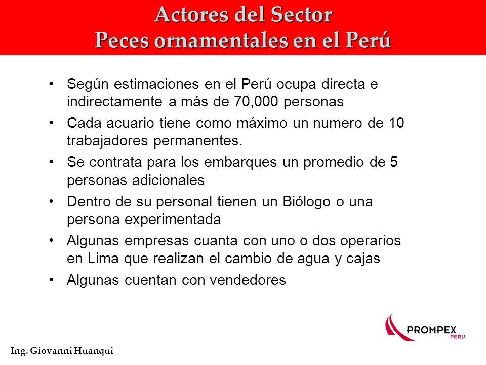 Actores del Sector Peces ornamentales en el Perú Ing.