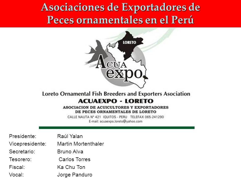 Asociaciones de Exportadores de Peces ornamentales en el Perú Presidente: Raúl Yalan Vicepresidente: Martin Mortenthaler Secretario: Bruno Alva Tesorero: Carlos Torres Fiscal: Ka Chu Ton Vocal: Jorge Panduro