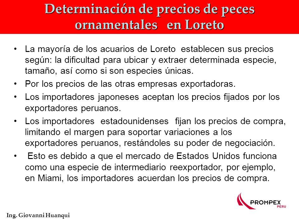 Determinación de precios de peces ornamentales en Loreto Ing.