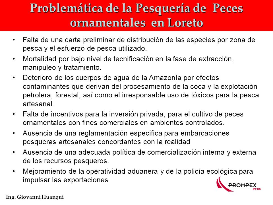 Problemática de la Pesquería de Peces ornamentales en Loreto Ing.
