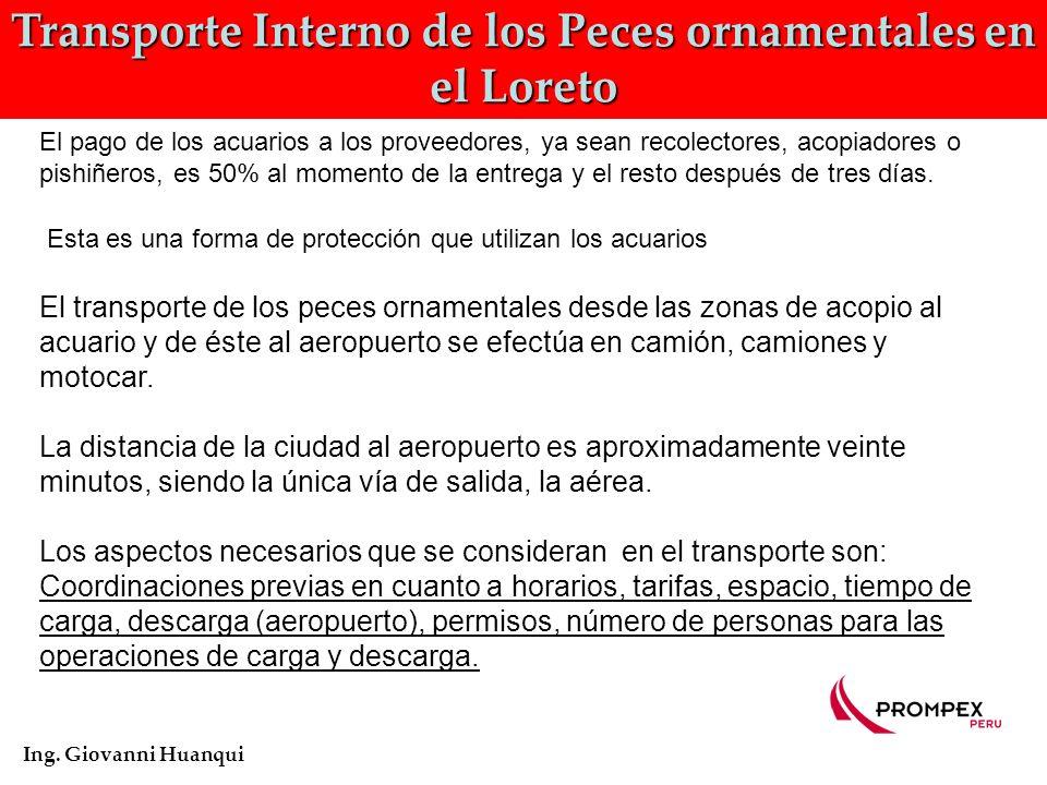 Flujo de Comercialización de los Peces ornamentales en el Perú Ing. Giovanni Huanqui