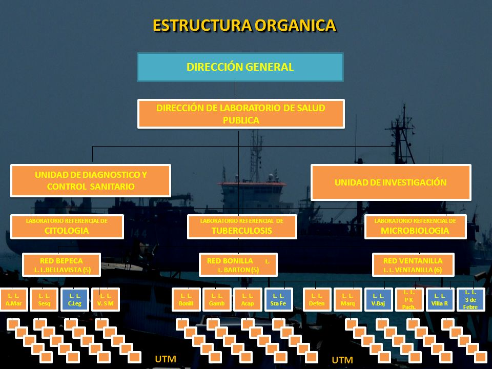 DIRECCIÓN GENERAL DIRECCIÓN DE LABORATORIO DE SALUD PUBLICA UNIDAD DE DIAGNOSTICO Y CONTROL SANITARIO UNIDAD DE INVESTIGACIÓN RED BEPECA L. L.BELLAVIS