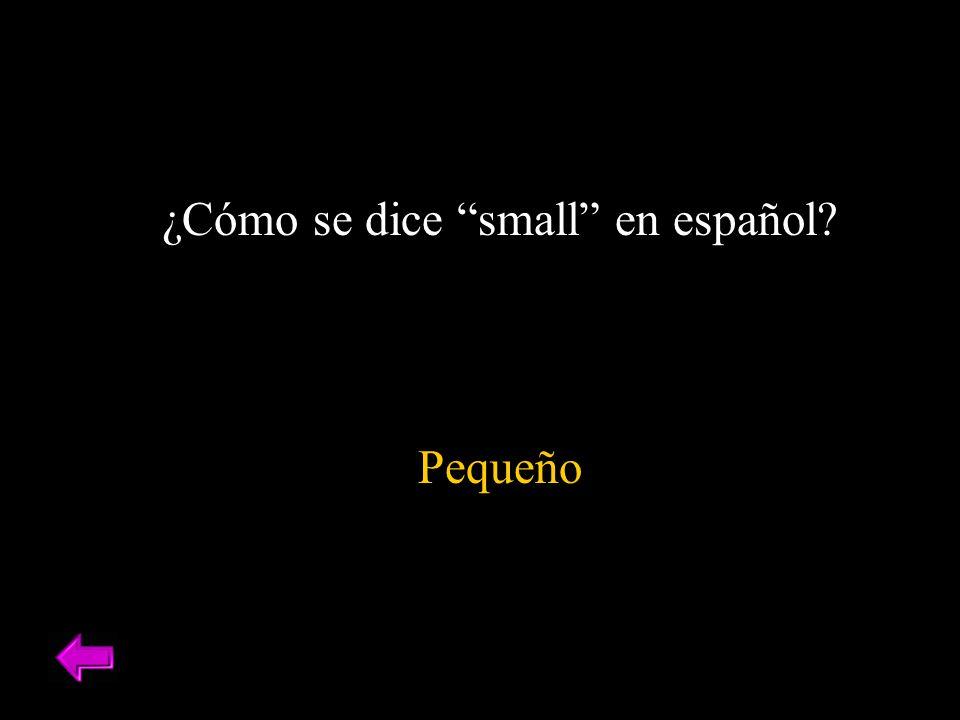 ¿Cómo se dice small en español? Pequeño