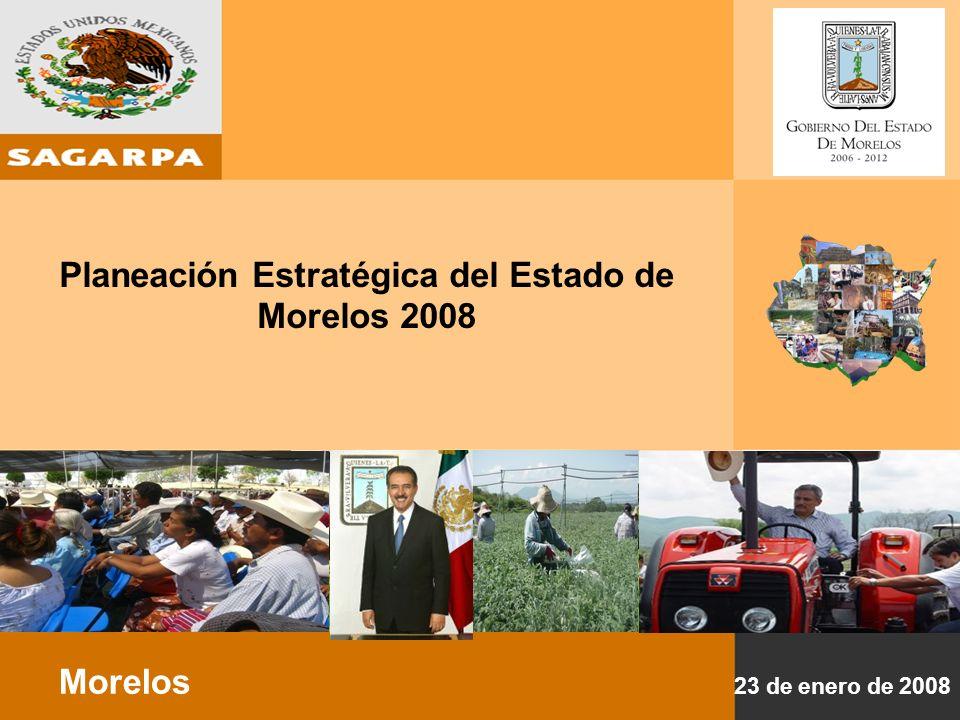 Planeación Estratégica del Estado de Morelos 2008 DIAGNOSTICO 33 Municipios 1.6 Millones de personas: 1,341 LOCALIDADES 85% URBANA 85 LOCALIDADES 15% RURAL 1,256 LOCALIDADES