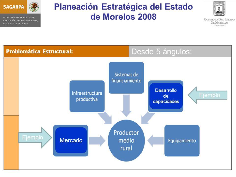 Planeación Estratégica del Estado de Morelos 2008 Problemática Estructural: Desde 5 ángulos: Mercado Desarrollo de capacidades Ejemplo