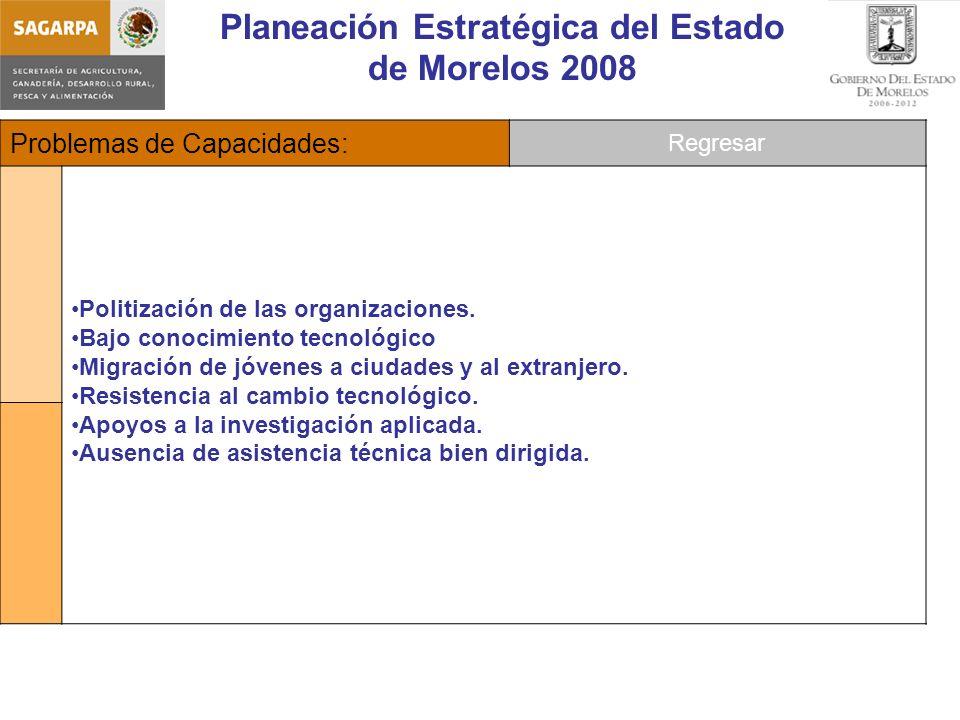 Planeación Estratégica del Estado de Morelos 2008 Problemas de Capacidades: Politización de las organizaciones.