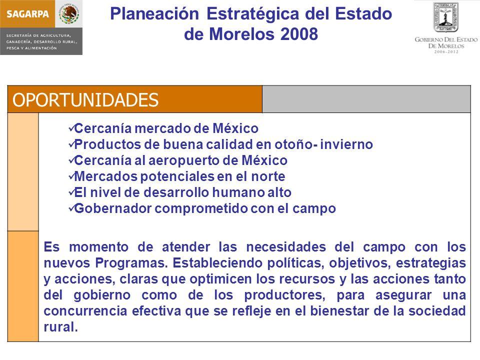 Planeación Estratégica del Estado de Morelos 2008 Acciones Estratégicas Programas SAGARPA Total Recursos SAGARPA Total Recursos Estatales Gran Total Programa para la Adquisición de Activos Productivos Programa Soporte SNIDRUS Investigacion, Validación y Transferencia Tecnológica Capacitación y Asistencia Técnica Sanidad e Inocuidad Atención a Sistemas Producto 76,880.00 9,690.00 11,558.00 25,850.00 102,627.45 21,350.55 123,978.00 Desarrollo económico en Regiones Rurales (Desarrollo Rural) 99,100.00 6,510.80 36,765.06 68,845.74 105,610.80 Otros Proyectos Estatales Estratégicos 82,360.20 500.00 1,810.00 5,202.00 5,000.00 71,507.49 23,364.71 94,872.20 Total Recursos SAGARPA 167,921.13 8,179.31 16,289.56 18,510.00 210,900.00 Total Recursos Estatales 90,419.07 500.00 3,320.69 6,981.24 12,340.00 113,561.00 Gran Total 258,340.20 500.00 11,500.00 23,270.80 30,850.00 210,900.00 113,561.00 324,461.00 80%9%7%4%