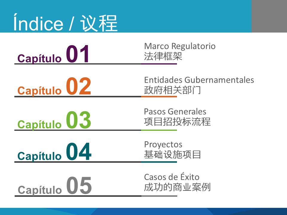 Índice / Marco Regulatorio Entidades Gubernamentales Pasos Generales Proyectos Capítulo 02 Capítulo 03 Capítulo 04 Capítulo 01 Casos de Éxito Capítulo