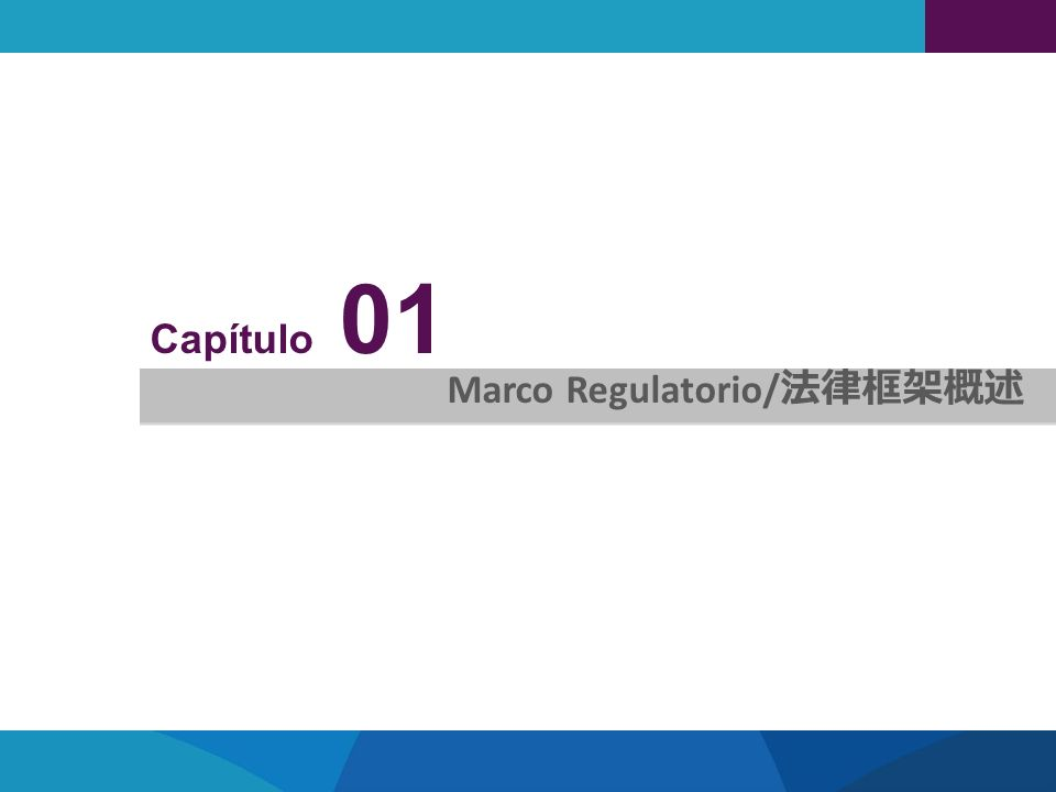 Capítulo 01 Marco Regulatorio/