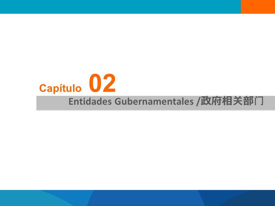 Capítulo 02 Entidades Gubernamentales /