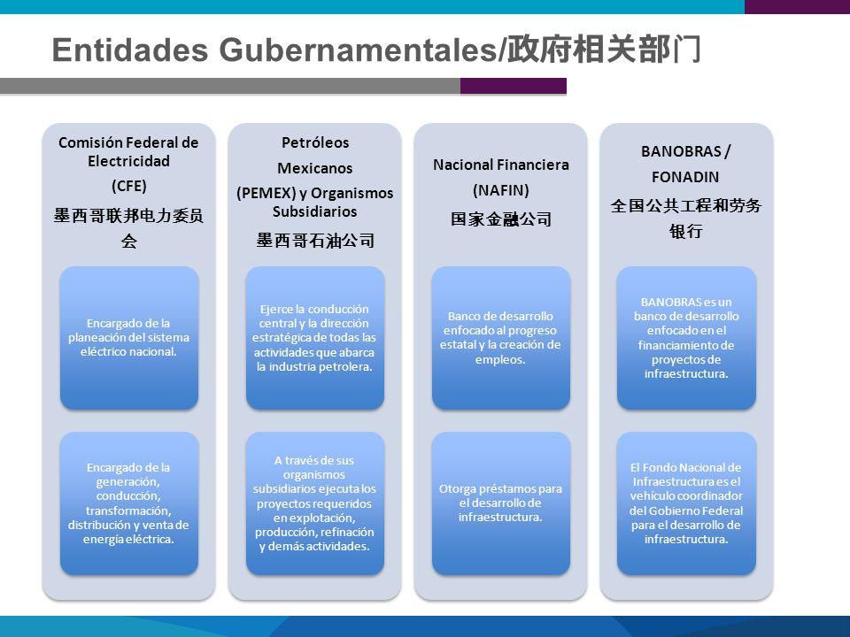 Entidades Gubernamentales/ Comisión Federal de Electricidad (CFE) Encargado de la planeación del sistema eléctrico nacional. Encargado de la generació