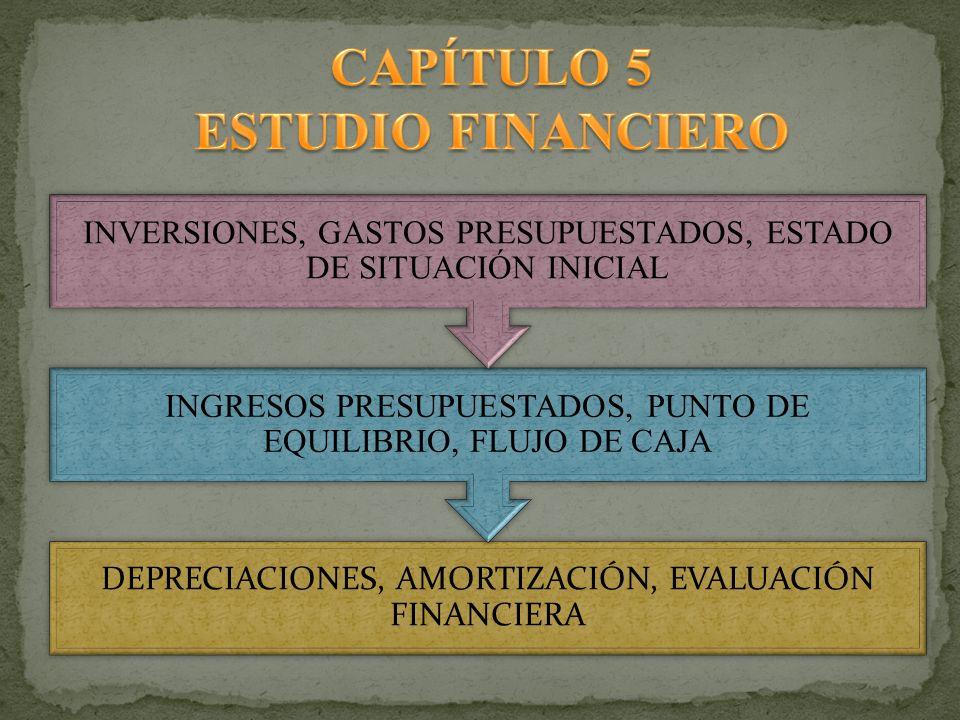 DEPRECIACIONES, AMORTIZACIÓN, EVALUACIÓN FINANCIERA INGRESOS PRESUPUESTADOS, PUNTO DE EQUILIBRIO, FLUJO DE CAJA INVERSIONES, GASTOS PRESUPUESTADOS, ES