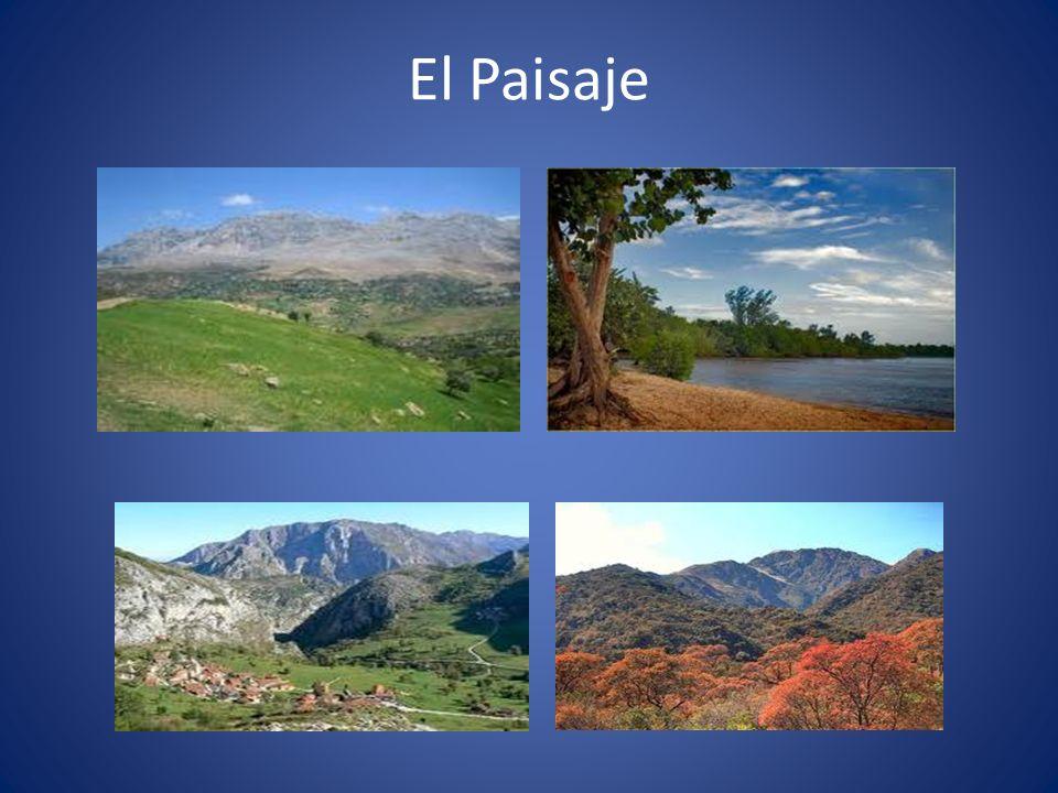 El Paisaje
