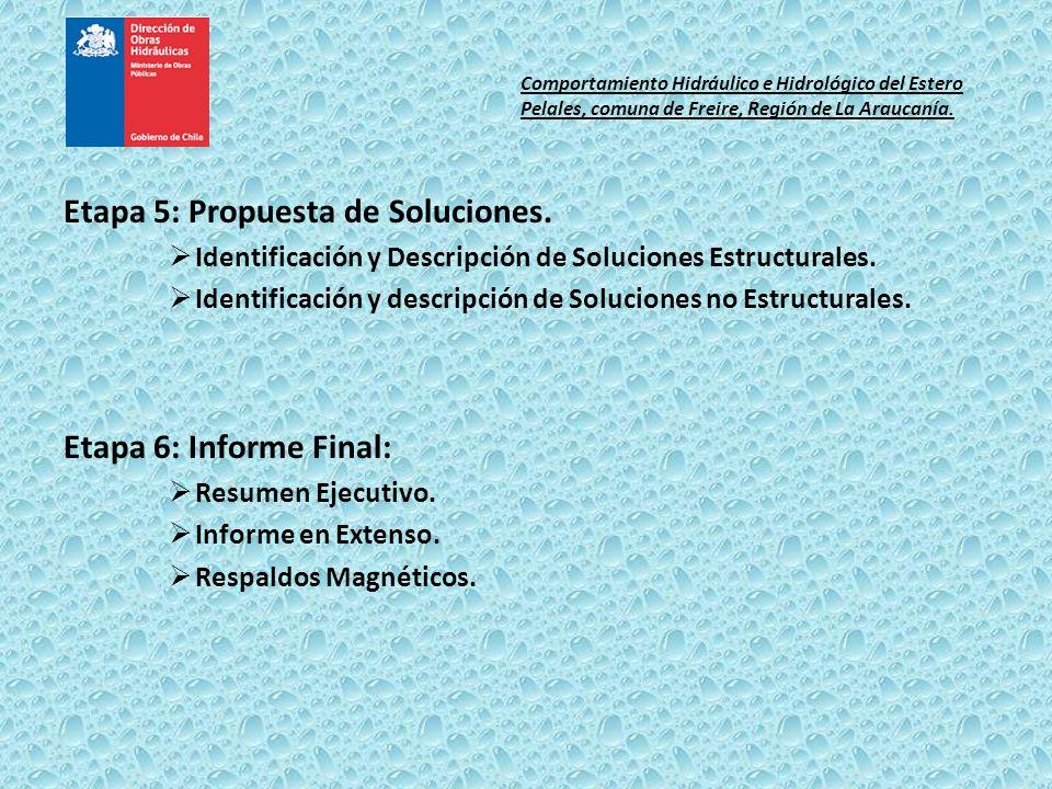 Etapa 5: Propuesta de Soluciones. Identificación y Descripción de Soluciones Estructurales. Identificación y descripción de Soluciones no Estructurale