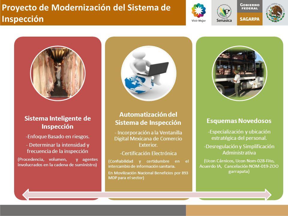 Proyecto de Modernización del Sistema de Inspección Sistema Inteligente de Inspección -Enfoque Basado en riesgos. - Determinar la intensidad y frecuen