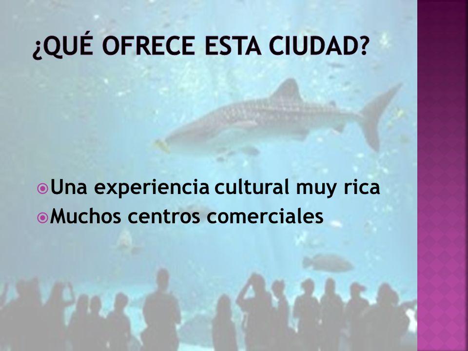 Una experiencia cultural muy rica Muchos centros comerciales