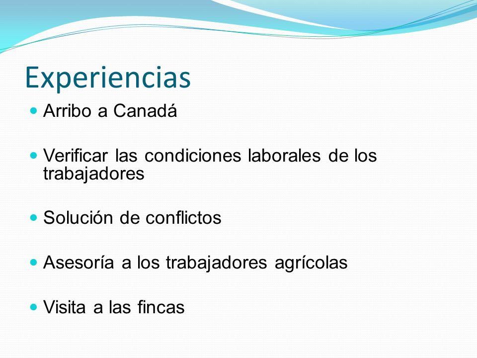 Experiencias Arribo a Canadá Verificar las condiciones laborales de los trabajadores Solución de conflictos Asesoría a los trabajadores agrícolas Visita a las fincas