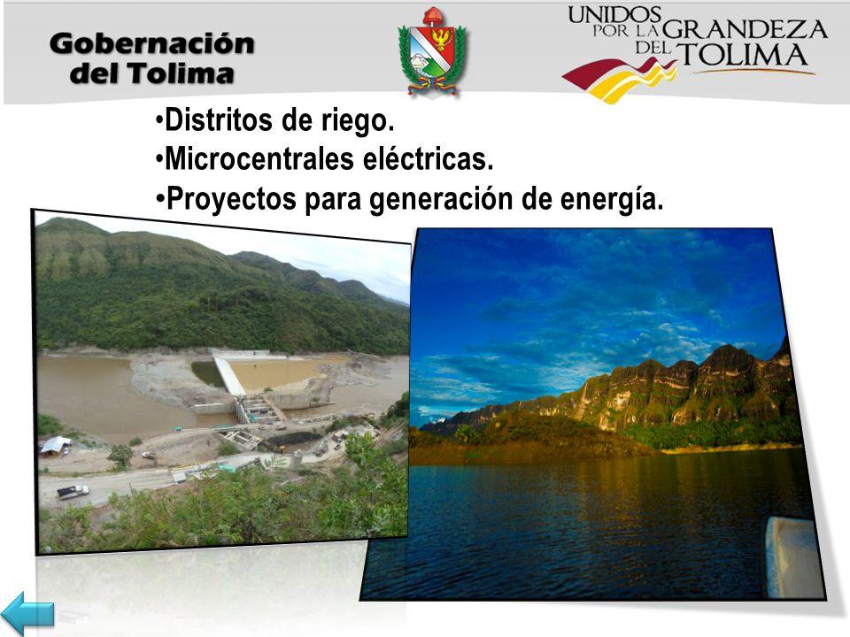 Distritos de riego. Microcentrales eléctricas. Proyectos para generación de energía.