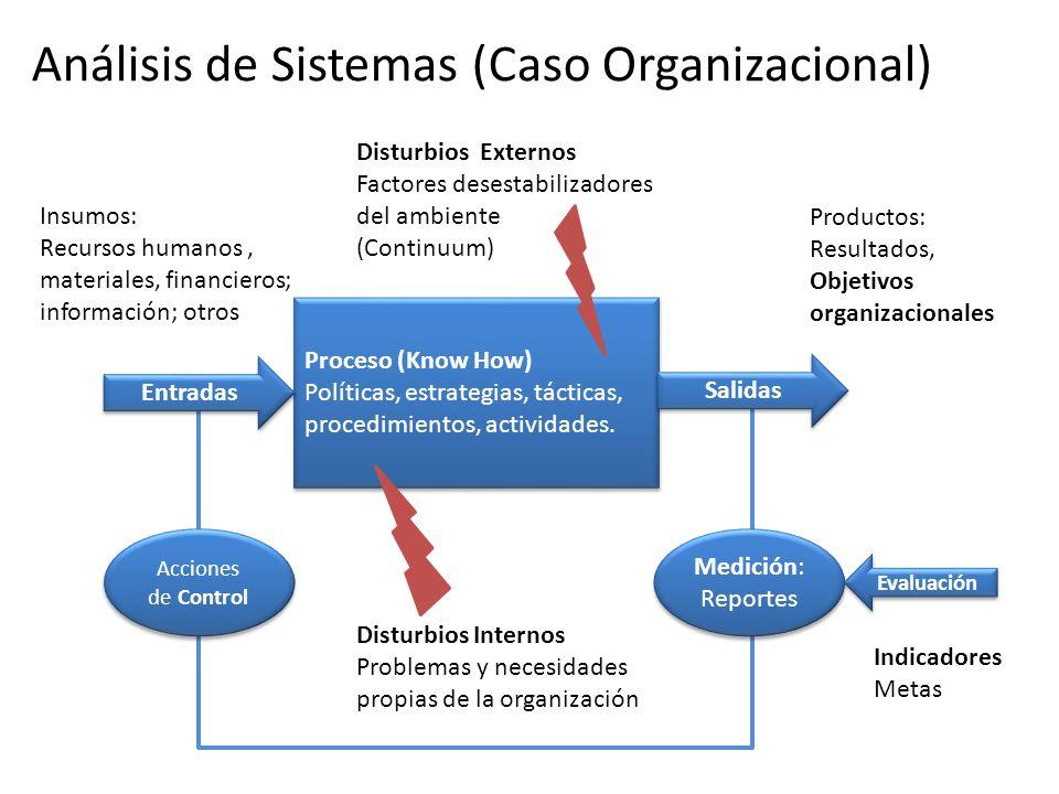 Productos: Resultados, Objetivos organizacionales Insumos: Recursos humanos, materiales, financieros; información; otros Disturbios Externos Factores