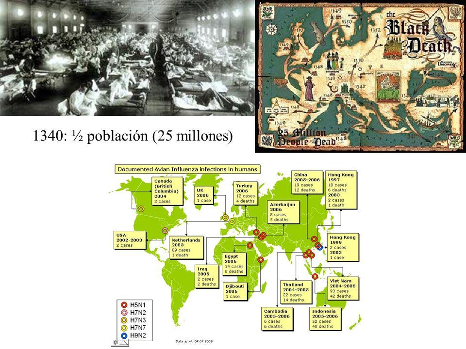 1340: ½ población (25 millones)