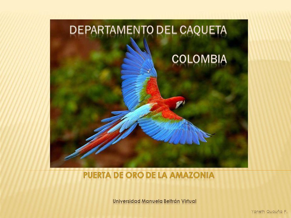 DEPARTAMENTO DEL CAQUETA Ubicación: Se localiza al suroriente, Colombiano Limita con los departamentos de META –GUAVIARE – VAUPÉS – HUILA – CAUCA – PUTUMAYO - AMAZONAS Extensión: 88.9 96 Km2, Relieve: Cordillera Oriental, lo atraviesan los ríos Caquetá, Orteguaza, Caguán y Yari; Serranía de Chibiriquete, piedemonte Amazónico.