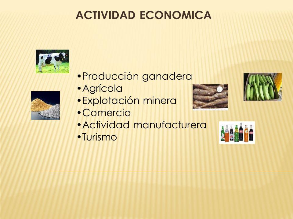 ACTIVIDAD ECONOMICA Producción ganadera Agrícola Explotación minera Comercio Actividad manufacturera Turismo