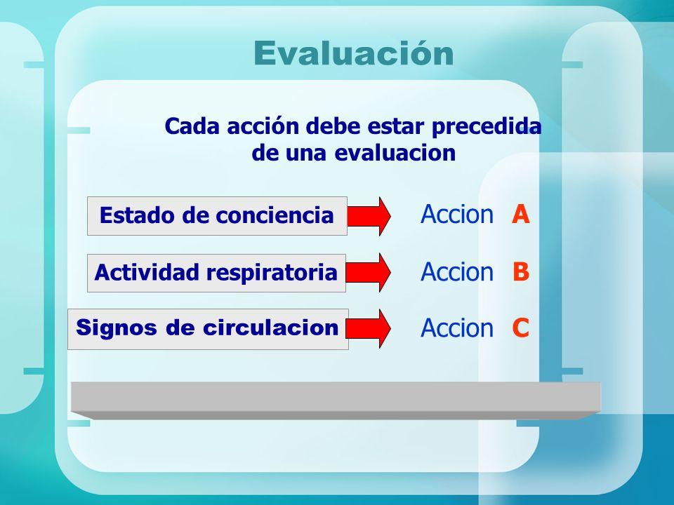 Evaluación Signos de circulacion Cada acción debe estar precedida de una evaluacion Estado de conciencia Accion A Actividad respiratoria Accion B Acci